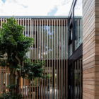 Warren Cottage by McGarry-Moon Architects (15)