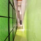 Casa del Limonero by Taller Estilo Arquitectura (5)