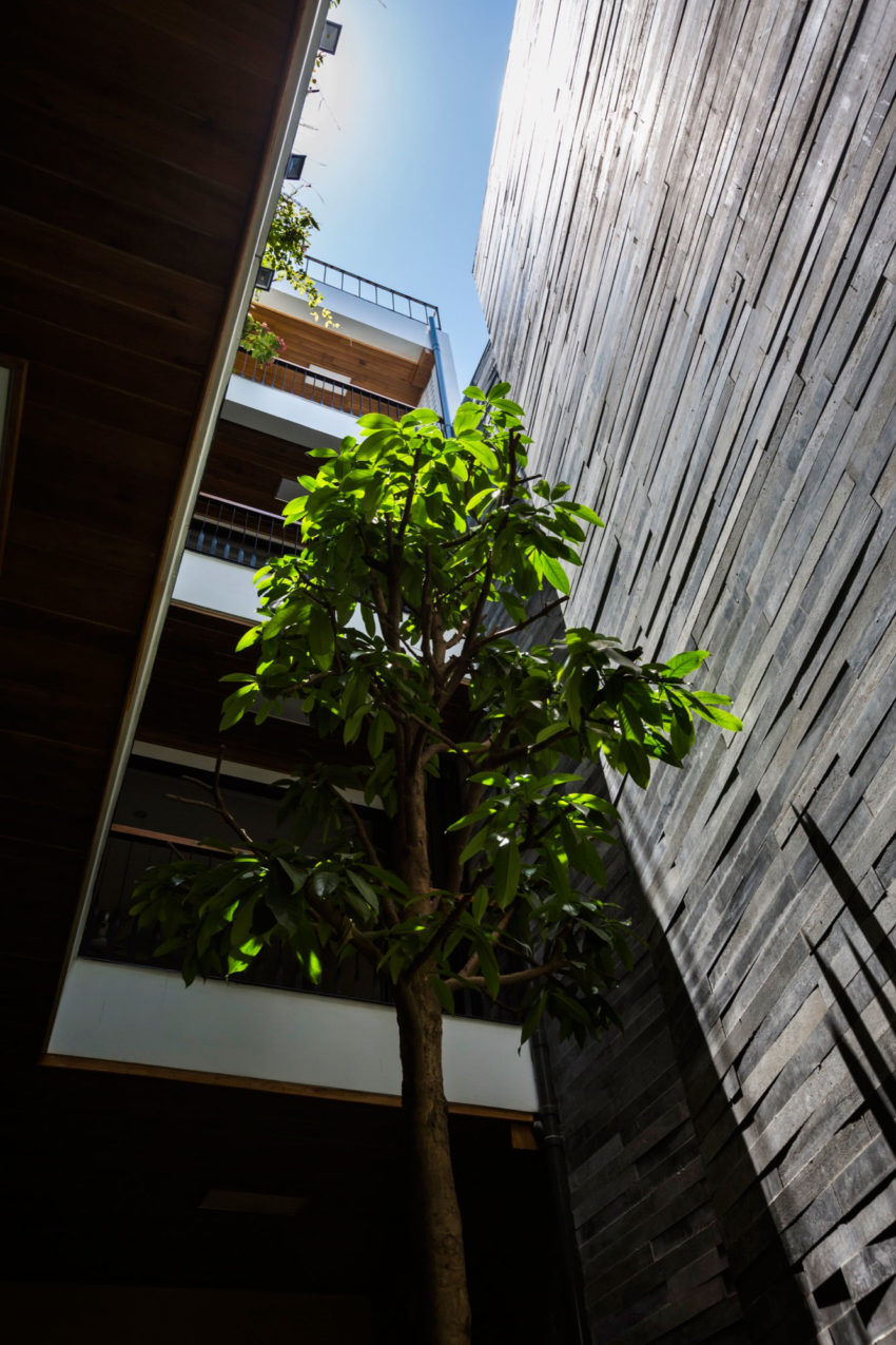 Garden House by Ho Khue Architects (11)