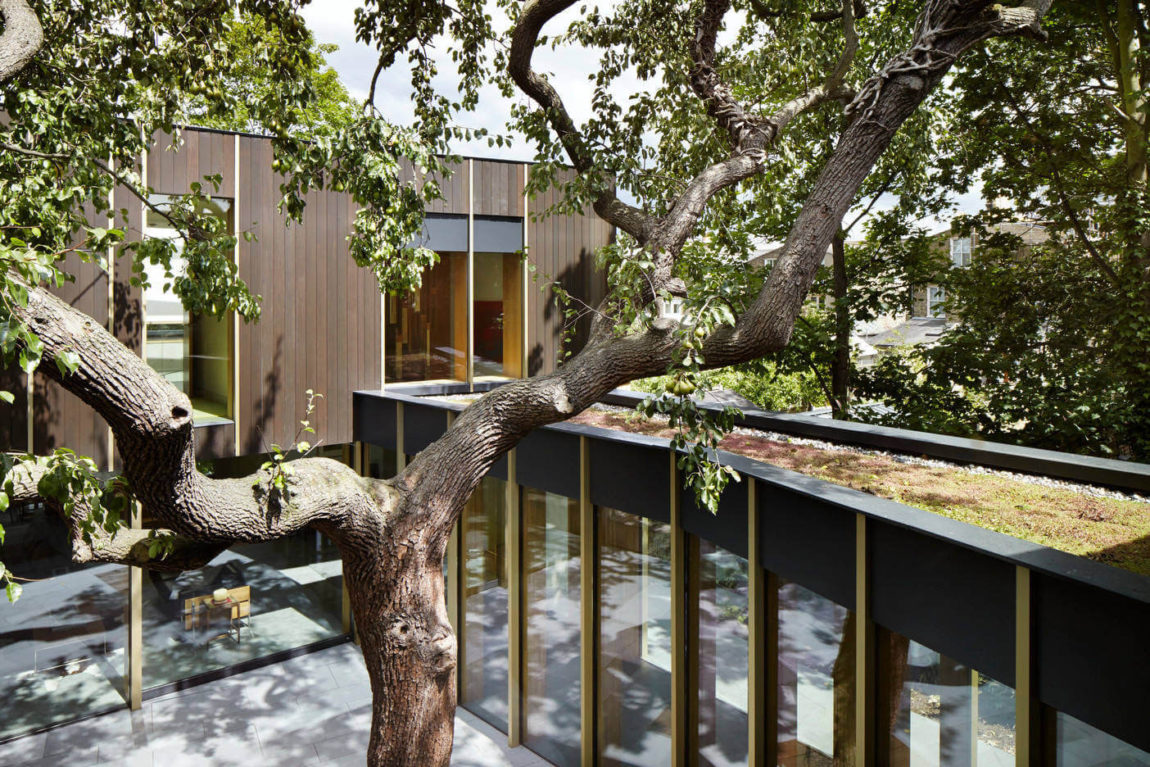 Pear Tree House by Edgley Design (2)
