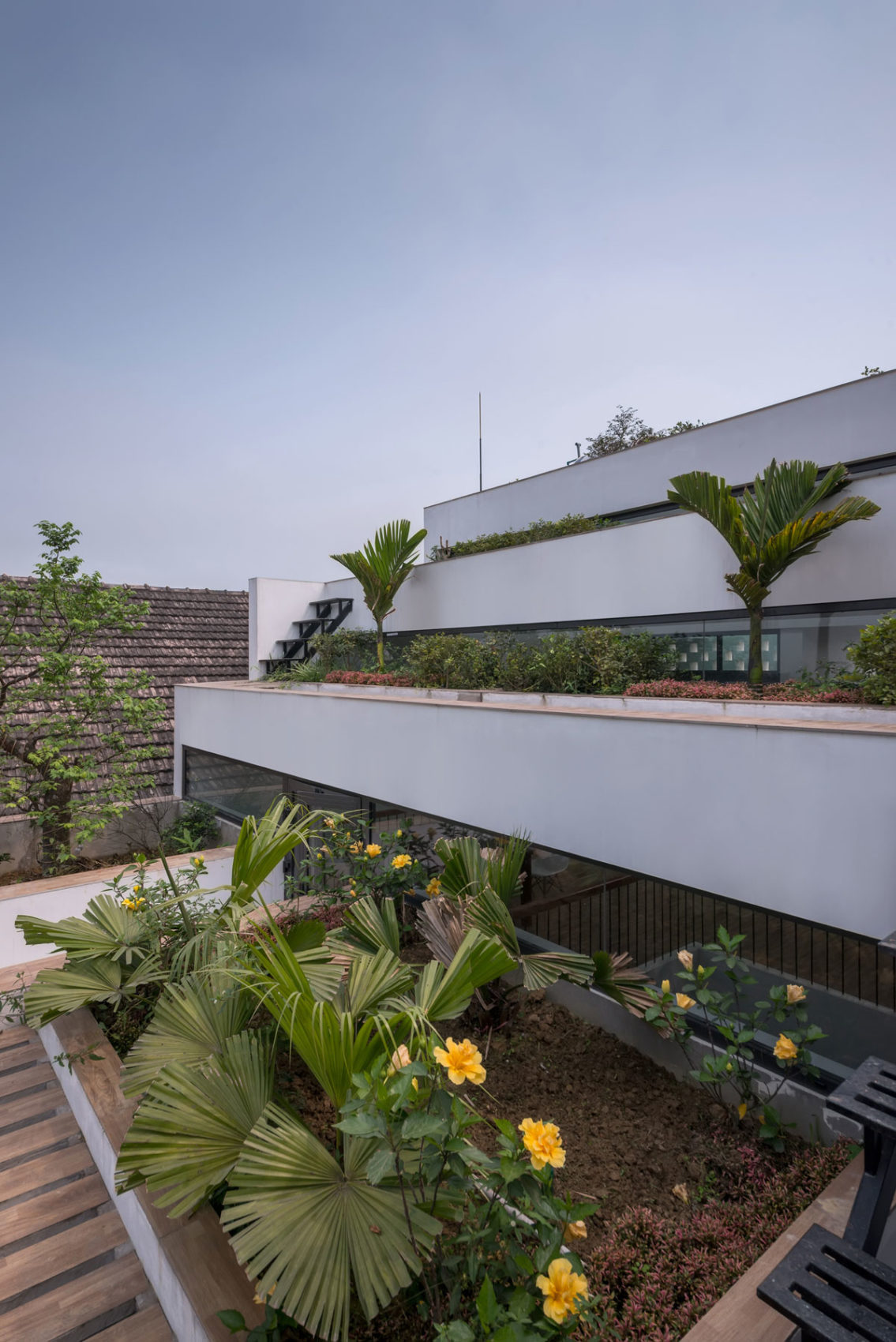 Terraces Home by H&P Architects (4)