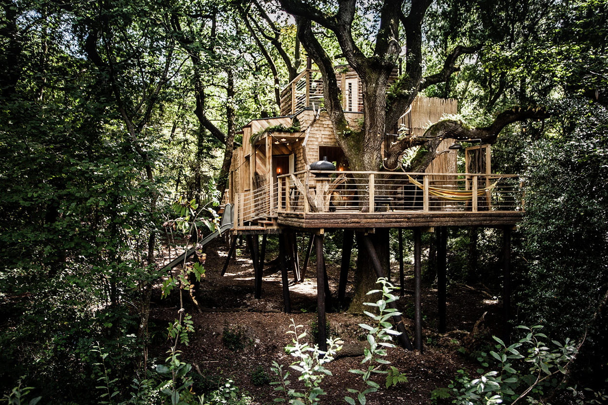 Mallinson Ltd and BEaM Studio Come Together to Create a Treehouse in the Forests of West Dorset, England