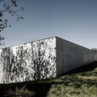 Concrete House by Marte.Marte Architects (9)