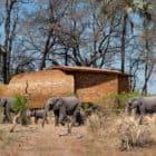 Solar-powered-safari-lodge-01