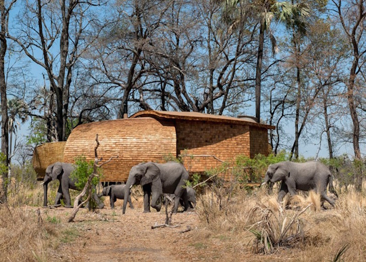 Solar-powered-safari-lodge-01
