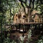 Create a Treehouse in the Forests