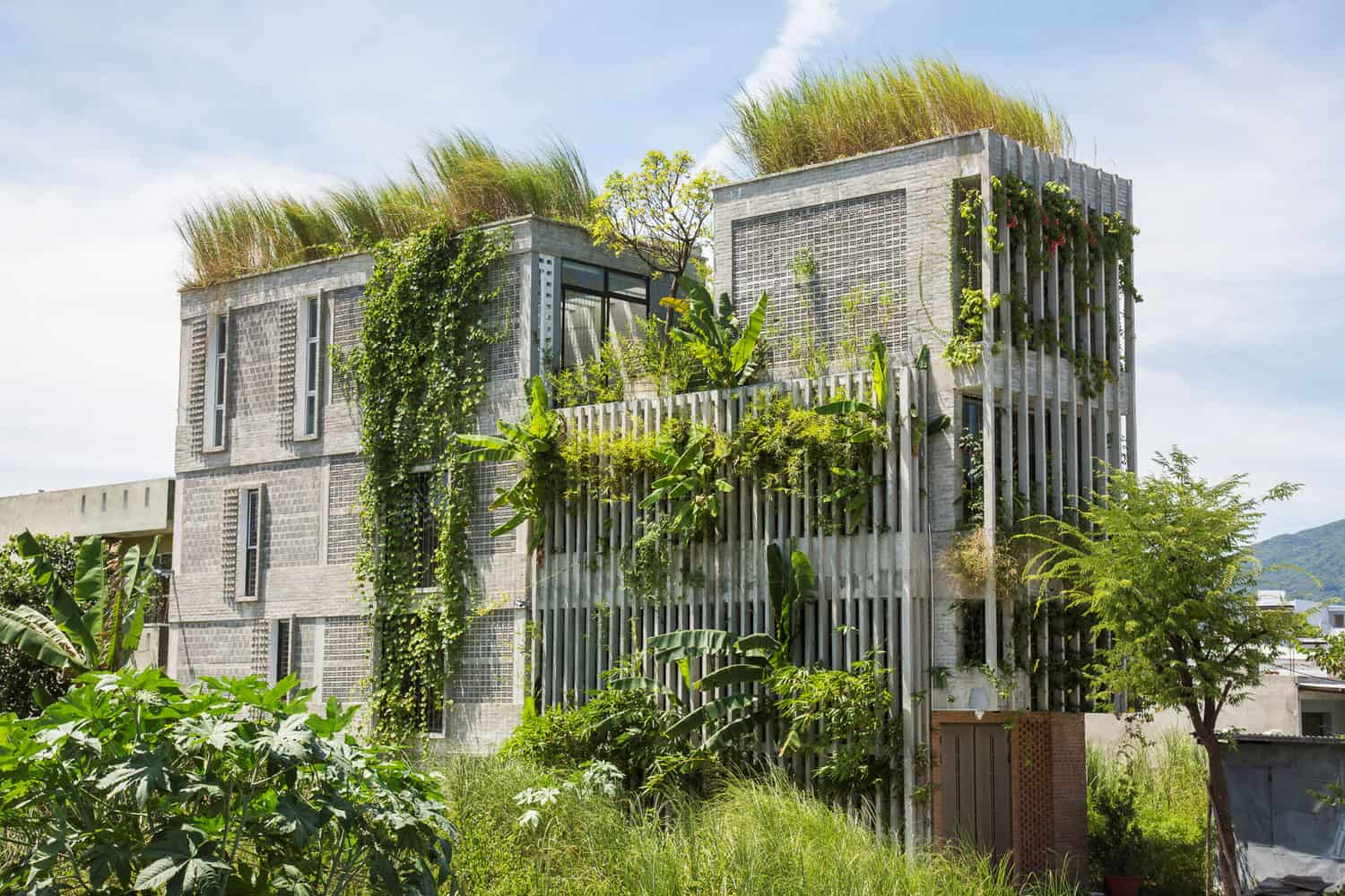 Structure Decorated with Exotic Native Plants in Vietnam