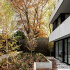 Fall makes its presence felt in the backyard of the contemporary home
