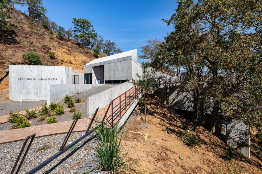Silkworm Sanctuary, the Mexican Building that Blends with the Environment - A9Themes News :: Home Decor :: by A9Themes Media on A9Themes News